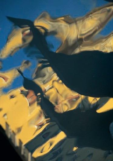 [引用]风光摄影的要诀(组图) - 九头狼[wuxuanwen] - 九头狼欢迎您!