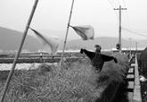 中国摄影网签约摄影师纳