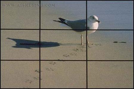 摄影构图原则 - 张飞 - wuhan47139的博客