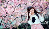 又到樱花烂漫时她在丛中笑